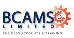 BCAMS Ltd